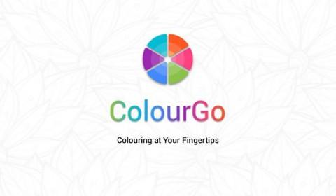 colourgo-colouring-book-7f5802-h900