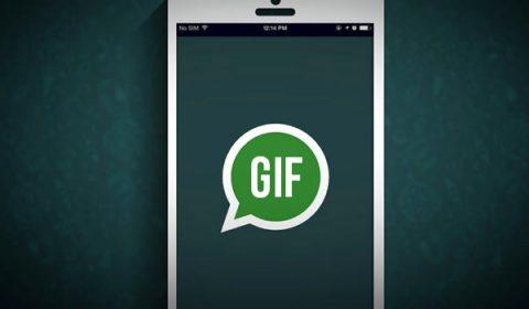 como enviar gif whatsapp
